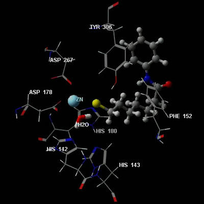 図2 ヒストン脱メチル化酵素の1種と私たちの開発した化合物のドッキングモデル