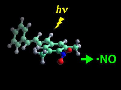 図1 光照射によって生理活性物質の1種である 一酸化窒素(NOラジカル)を放出する化合物の分子モデル
